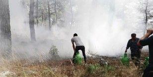 Çalıyı çırpıyı alan köylüler yangına koştu, kadınlar traktör ile su taşıdı