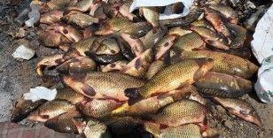 Yasak malzemelerle balık avlayan 27 kişi hakkında işlem yapıldı