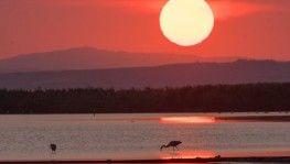 Kuş Cenneti'nde kartpostallık görüntüler