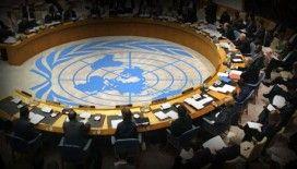 4 ülkeden BMGK'da reform çağrısı