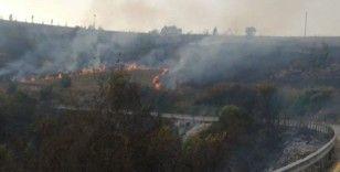Kocaeli'nin 11 bölgesinde orman yangınları çıktı