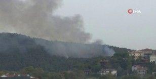 Anadolu Hisarı'ndaki orman yangınına müdahale sürüyor