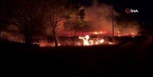 Gelibolu'daki orman yangını söndürüldü