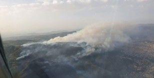 Söke'deki yangın Dilek Yarımadası Milli Parkı'nı tehdit ediyor