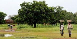 BM: Afrika, yasa dışı sermaye çıkışını engellese dünyaya borç verebilir