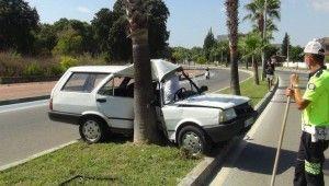 Virajı alamayan ehliyetsiz sürücü palmiyeye çarptı
