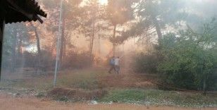 Kocaeli'de ormanlık alanda çıkan yangın kontrol altına alındı
