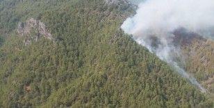 Gündoğmuş'ta orman yangını