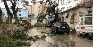 Tekirdağ'ın Marmaraereğilisi ilçesini hortum vurdu