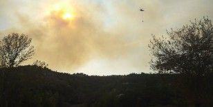 Osmaniye'de orman yangını çıktı, alevler evlerede sıçradı