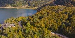 Abant Tabiat Parkı'nda sonbaharın tüm renkleri bir arada