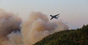Hatay'daki orman yangınında 300 hektar alan zarar gördü