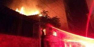 İzmir'deki korkunç yangında kuşlar telef oldu