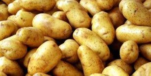 Depoya girmeyen patates şehirde 2 lira