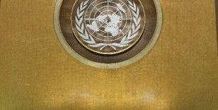 Özbekistan BM İnsan Hakları Konseyi'ne seçildi