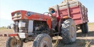 Traktör direksiyonuna geçen kadın çiftçiler pancarın 'tatlı' yolculuğu için mesaide