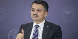 Tarım ve Orman Bakanı Pakdemirli: Kütlü pamuk primini kilogram başına 1,1 liraya çıkardık