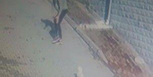 Köpeği önce sevdi, sonra kaçırdı: O anlar güvenlik kameralarına yansıdı