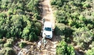 Kaçak avlanan 4 kişi drone destekli denetimde yakalandı