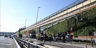 Balıkesir Büyükşehir Belediyesi İBB'nin söktüğü dikey bahçelere talip oldu