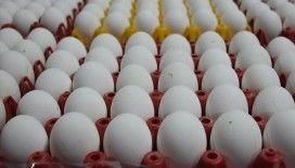 Yumurta fiyatlarında 'denge' hesapları