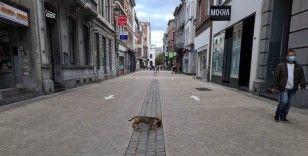Belçika'da Covid-19 kuralları yeniden sıkılaştırıldı