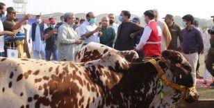 Türk Kızılaydan Pakistan'daki çiftçilerin kalkınmasına destek