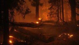 ABD'nin Colorado eyaletindeki yangınlar etkili olmaya devam ediyor