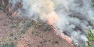 Kahramanmaraş'ta orman yangını