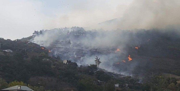 Adana'daki orman yangınına müdahale sürüyor
