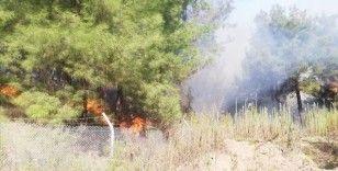 Hatay'ın İskenderun ilçesinde dün başlayan orman yangını kontrol altına alındı