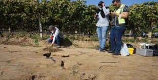 Manisa'da oluşan fay hattını incelediler