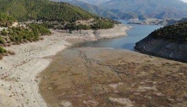 Altınkaya Barajı'nda korkutan görüntü
