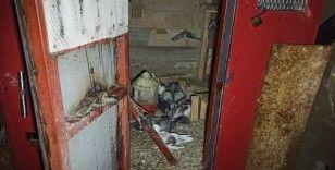 Yanan kulübedeki tüp patladı: 1 kişi yaralandı, 24 güvercin telef oldu