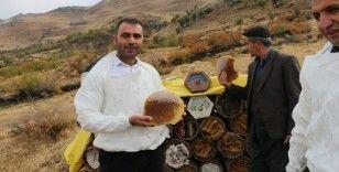 Terörün kökünün kazındığı bölgede organik bal hasadına başlandı