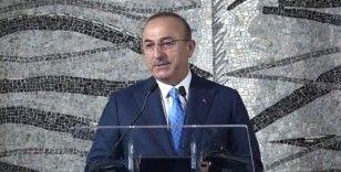 Dışişleri Bakanı Mevlüt Çavuşoğlu, Birleşik Krallık Dışişleri Bakanı Dominic Raab'la görüştü