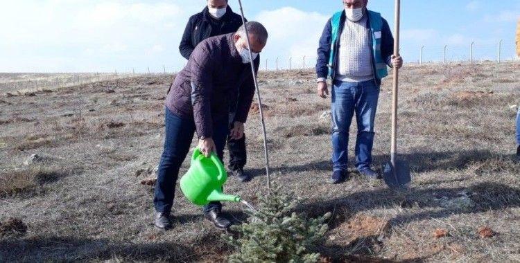 Kütahya'da Adalet Ormanı'na 300 fidan dikildi