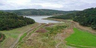 İstanbul'un barajlarındaki su son 10 yılın en düşük seviyesinde