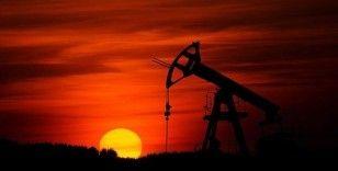 BAE'de 22 milyar varillik petrol sahası keşfedildi