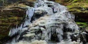Bolu Köroğlu Dağları'ndaki şelale ve dereler dondu
