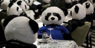 Koronadan kapanan restoranında oyuncak pandaları müşteri gibi ağırladı