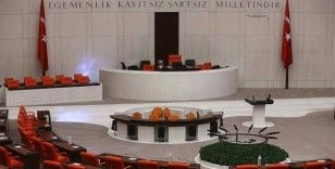Meclis bu hafta Türkiye Çevre Ajansının kurulması için mesai yapacak