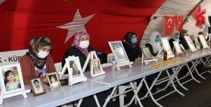 'Ya ölüm ya istiklal' diyen Diyarbakır anneleri evlat nöbetine devam ediyor