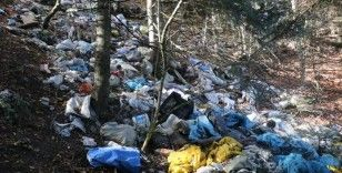 Bolu'da ormanlara atılan çöpler doğal hayatı tehdit ediyor