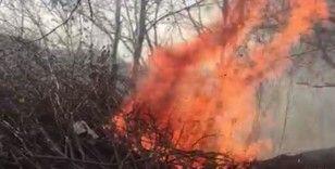 Ordu'da ormanlık alanda çıkan yangın paniğe neden oldu