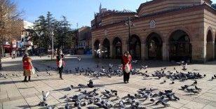 Türk Kızılay kısıtlamada kuşlar ve sokak hayvanlarını unutmadı