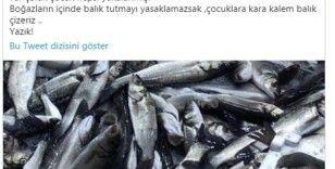 Ünlü komedyen Ata Demirer'den kaçak ve bilinçsiz avlanmaya tepki