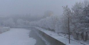 Kars'ta soğuktan sis ve kırağı oluştu
