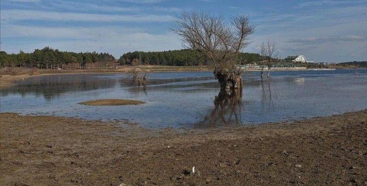 Bilecik'teki Pelitözü Göleti'nde yağış azlığı nedeniyle sular 30 metre çekildi
