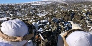 Bitlis'te 3 terörist etkisiz hale getirildi